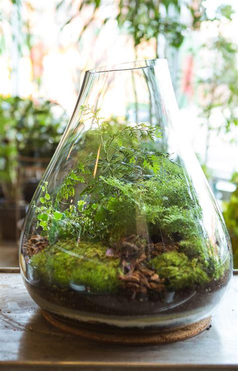 jada diy gift ideas terrariums