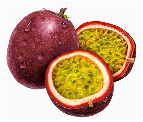 Markisa Passionfruit Selai everything and beyond monday madness the benefits of maracuja fruit