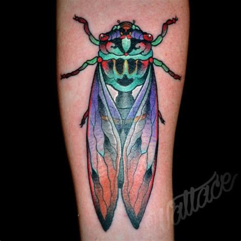 cicada tattoo best 25 cicada ideas on plant