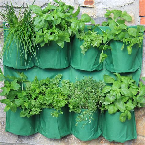 herb planters herb wall planter haxnicks