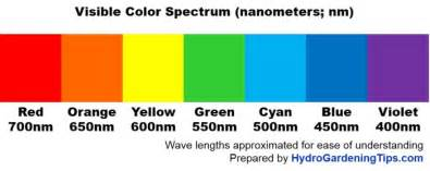 wavelength color color wavelength images search