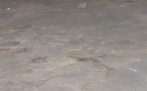 how to fix basement humidity problems completeremodeling