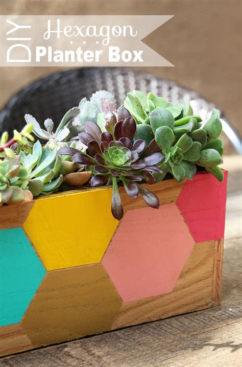 Diy Succulent Planter by Top 10 Diy Projects With Succulent Plants