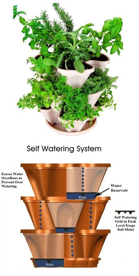 why we love self watering planters zerosoil gardens 92 best images about earth box self watering sub