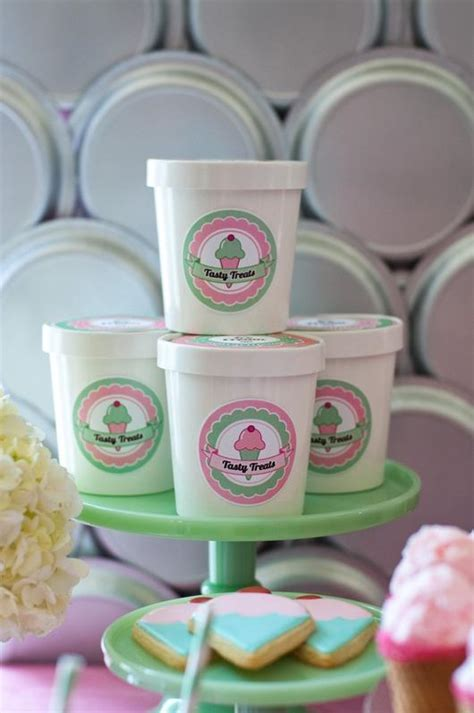 Mini Ice Cream Tub Containers with Lids   BirdsParty.com