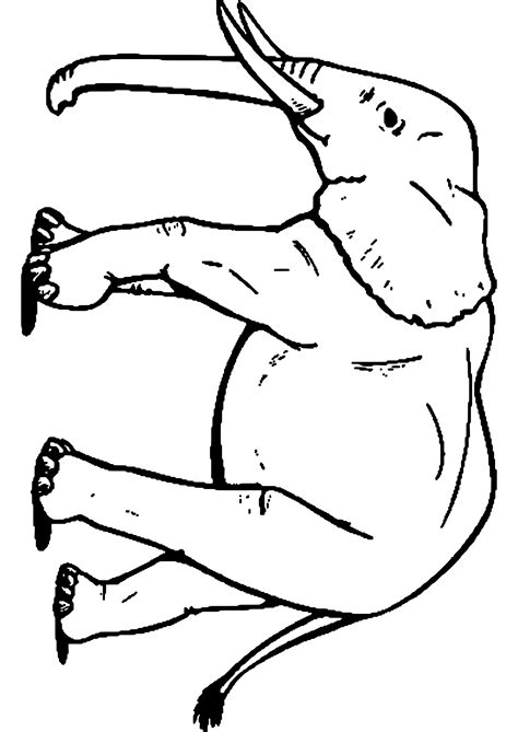 imagenes de elefantes faciles para dibujar malvorlagen der elefant zum drucken