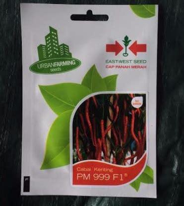 Cabai Keriting Merah Tm 999 benih cabai pm 999 f1 50 biji panah merah bibitbunga