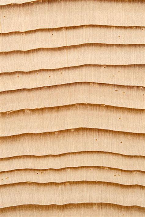 Fichte Eigenschaften by Das Holz Der Fichte