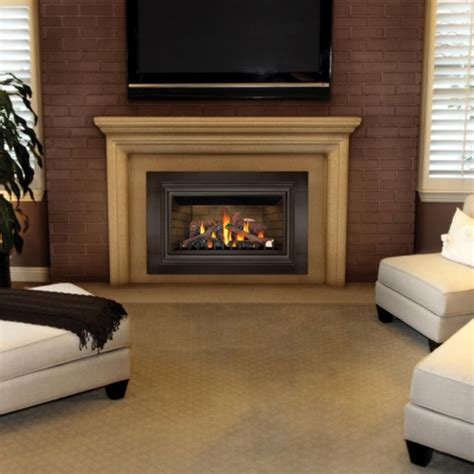 contemporary gas fireplace insert napoleon basic direct vent gas fireplace insert multicolor