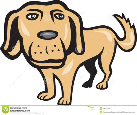 dogs with big heads retriever big isolated stock vector image 39519273