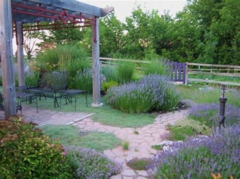 backyard gardening ideas with pictures lavender garden wins backyard garden spaces contest fine