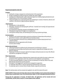 Chief Strategy Officer Description by Ceo Description