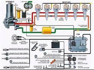 Fuel System Eui Eui Fuel System Eui Free Engine Image For User Manual
