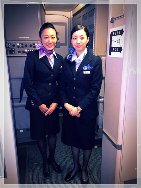 cabin attendants 17 best images about cabin crew on