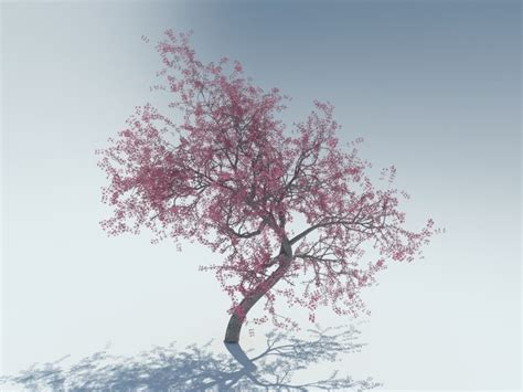 cherry tree 3dm realistic tree 3d model