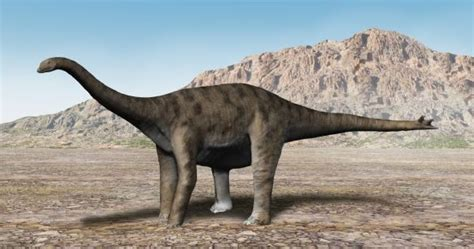 carlisle cathedral dinosaur on the floor bishop bell and the dinosaur evolutionary by