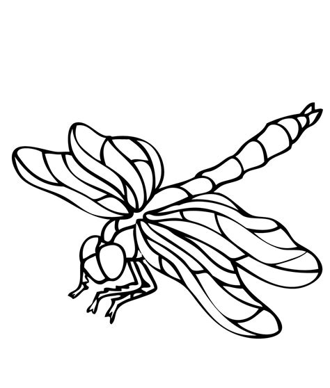 printable dragonfly coloring pages coloring me
