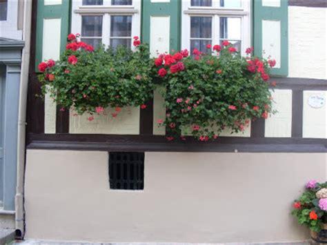 Wohnung Mit Garten Quedlinburg by Garten Anders Fenster In Quedlinburg Der Weltkulturerbe
