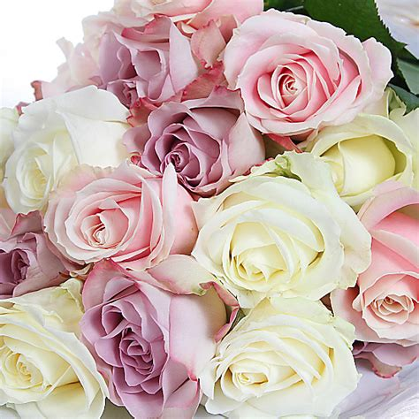 next day 4 color 20 luxury pastel roses delivered next day