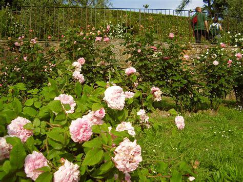 giardini famosi giardino delle