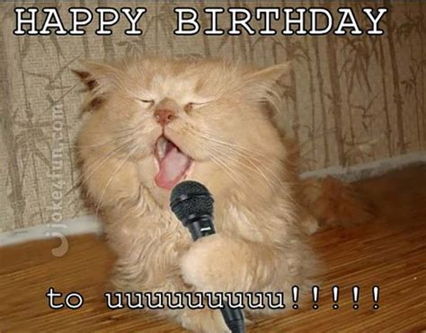 Funny Cat Birthday Meme - joke4fun memes cat will perform a birthday song just for
