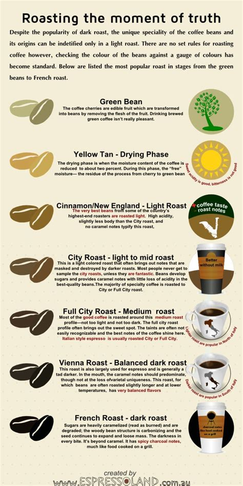 what is light roast coffee 17 best images about infograf 237 as caf 233 on pinterest