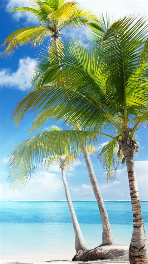 of the caribbean wallpaper iphone 6 wallpaper iphone 6 hd 6731 image pictures free