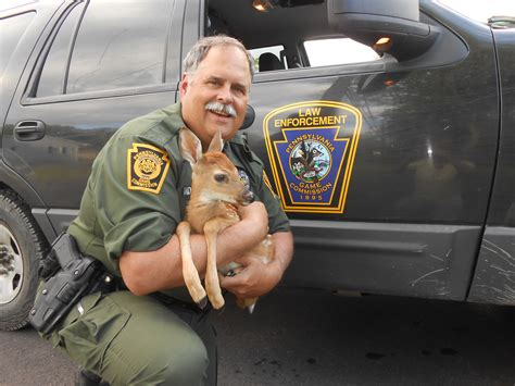 pa fish and boat commission deputy deputy wildlife conservation officers from the field