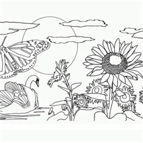 beautiful nature coloring pages floral pages for adults nature coloring pages