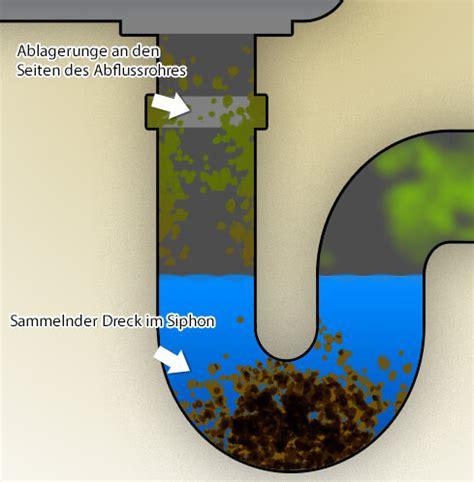 Was Hilft Gegen Verstopften Abfluss by Abfluss Stinkt Was Gegen Einen Stinkenden Abfluss Hilft