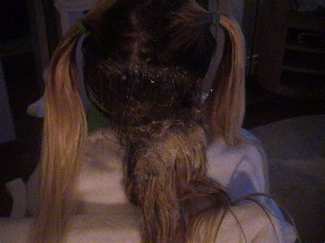 tangled hair techs how to detangle matted hair