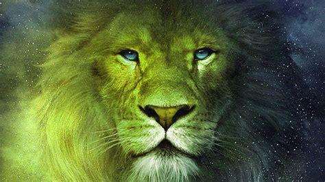 imágenes de leones para whatsapp fondo escritorio le 243 n