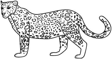 Printable Baby Cheetah Coloring Pages