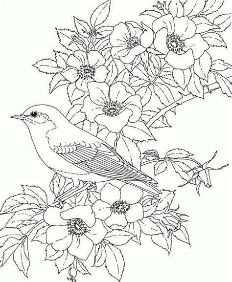 coloring book for adults flowers coloring pages flowers coloring pages for adults