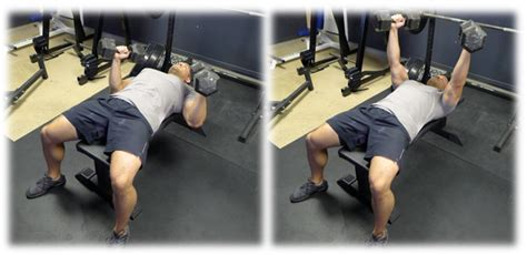 proper dumbbell bench press form how to increase your bench press bret contreras
