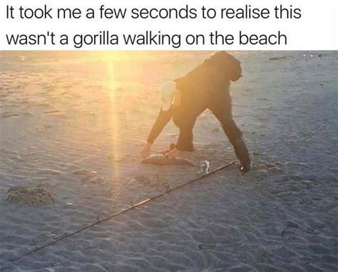 Funny Beach Memes - best 25 beach humor ideas only on pinterest work