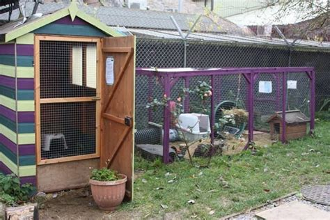 Rabbit Shed Ideas by 17 Best Images About Bunny Barns On Rabbit Run Home And Sweet Home