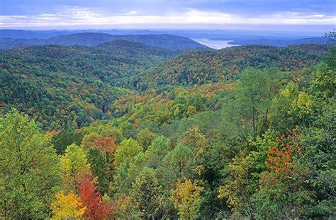 landscapers nc image gallery carolina landscape