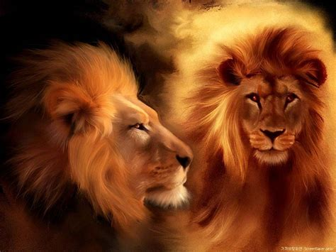 wallpaper 3d lion lion wallpapers for mobile funny animal