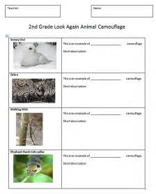 Camouflage printable worksheets along with worksheets math cafe along