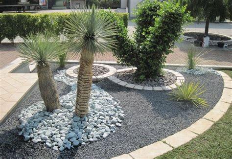 giardini piante grasse per esterno aiuole piante grasse piante grasse aiuole piante