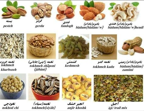 language farsi best 25 learn ideas on learn farsi