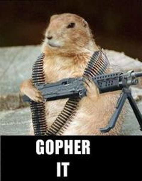 Gopher Meme - gopher it image gallery sorted by favorites know your