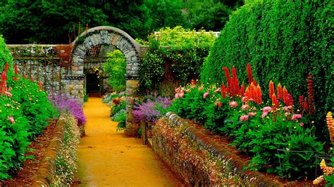 Flowers For Home Garden Home Flower Garden Streets Hd Wallpapers Rocks