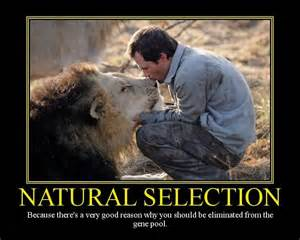 Natural Selection Meme - friday funny natural selection a touch of cass
