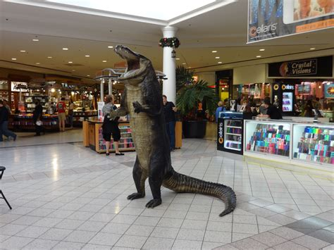 oaks mall layout gainesville fl file standing alligator inside the oaks mall jpg