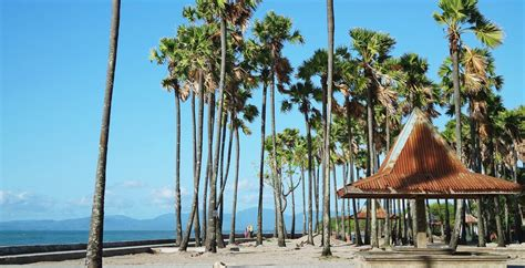 pantai lasiana wisata pantai unggulan kota kupang situs