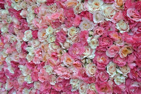 wallpaper flower wall flower wall pesquisa google backgrounds pinterest