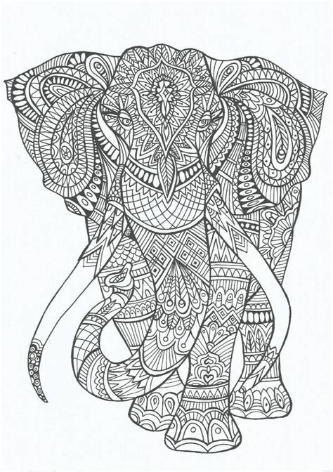 anti stress colouring book for adults coloring coloring for adults and elephants on