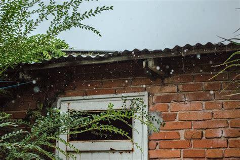 facciata casa albero erba pianta casa finestra tetto parete villaggio